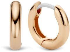 Ti Sento Milano Earrings 7210RS