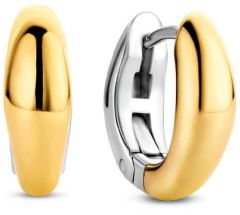 Ti Sento Milano Earrings Gilded 7804SY