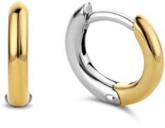 Ti Sento Milano Earrings 7811SY