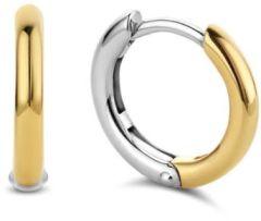 Ti Sento Milano Earrings 7812SY